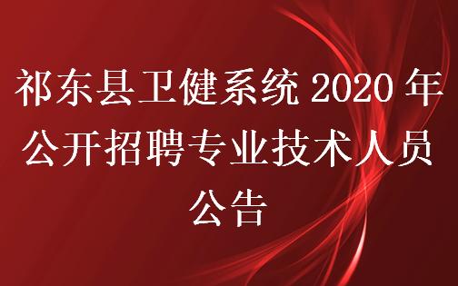 祁东县卫健系统2020年公开招聘专业技术人员公告