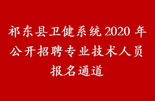 祁东县卫健系统2020年公开招聘专业技术人员报名通道