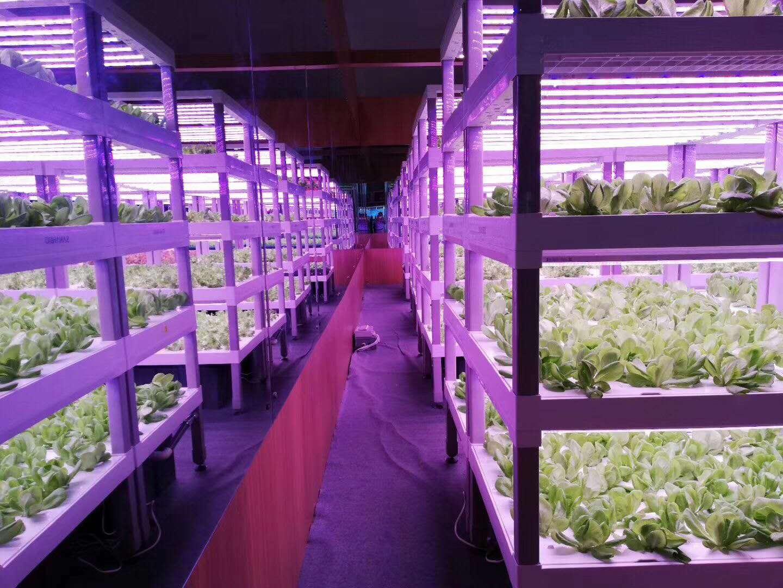 農業種植生產過程中的一些新產品。包括:水肥機、LED植物補光燈、光照培養架、各類農業檢測儀器。