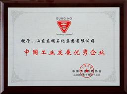中國工業發展優秀企業