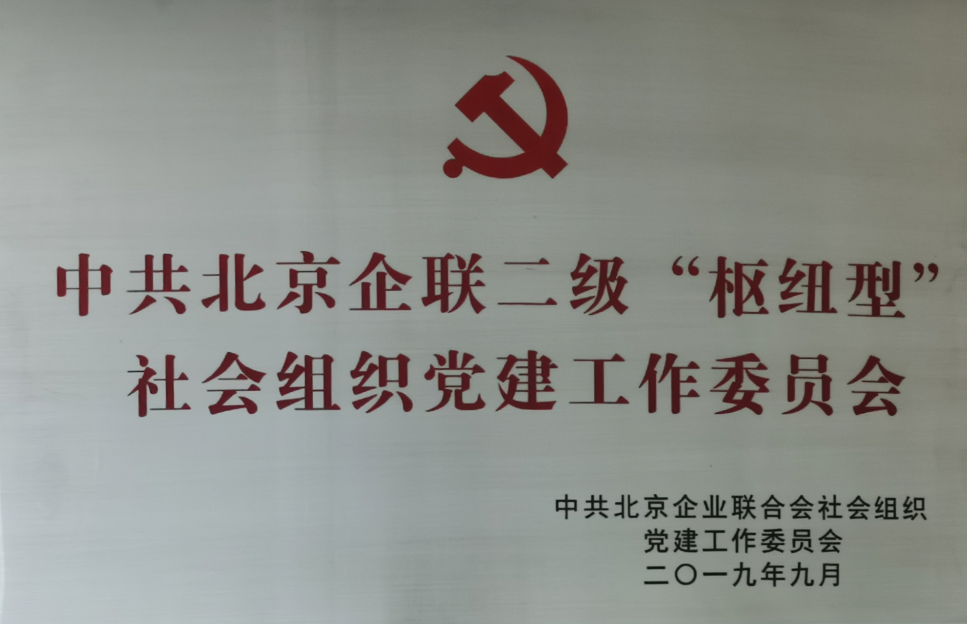 社会组织党建工作委员会