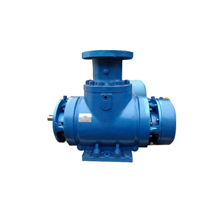 _0000s_0000s_0000_双螺杆泵泵头