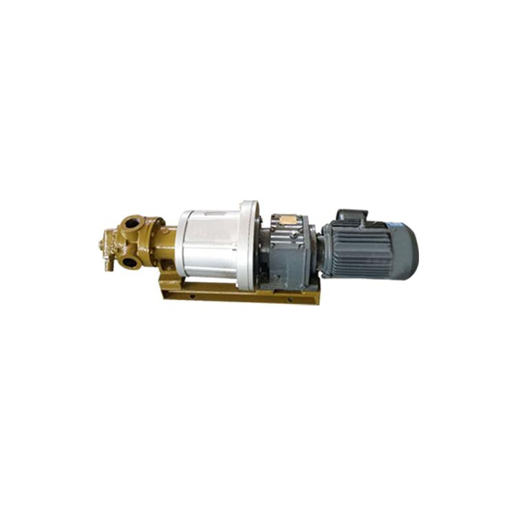 _0003s_0003_磁力转子泵