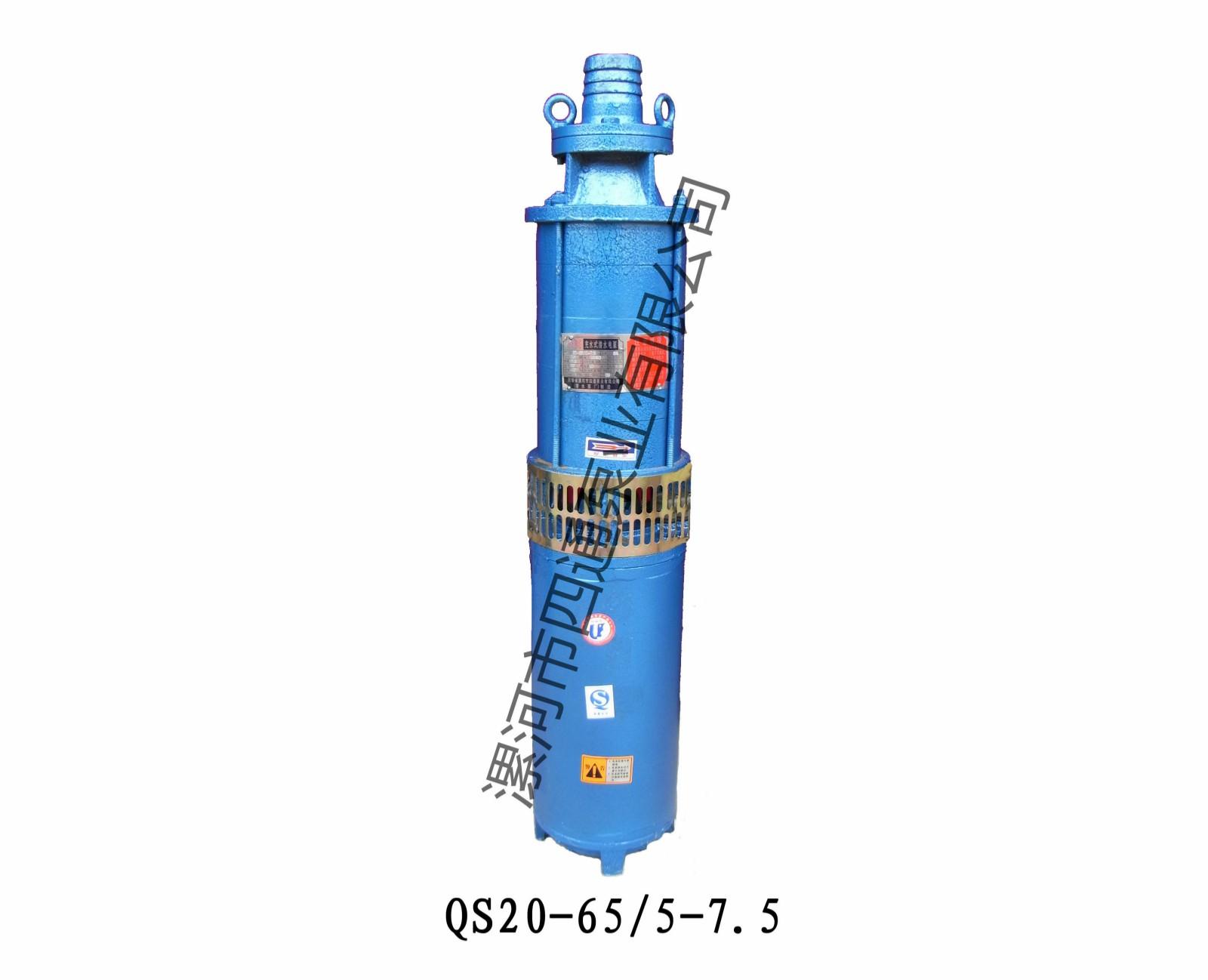 QS20-65潛水泵