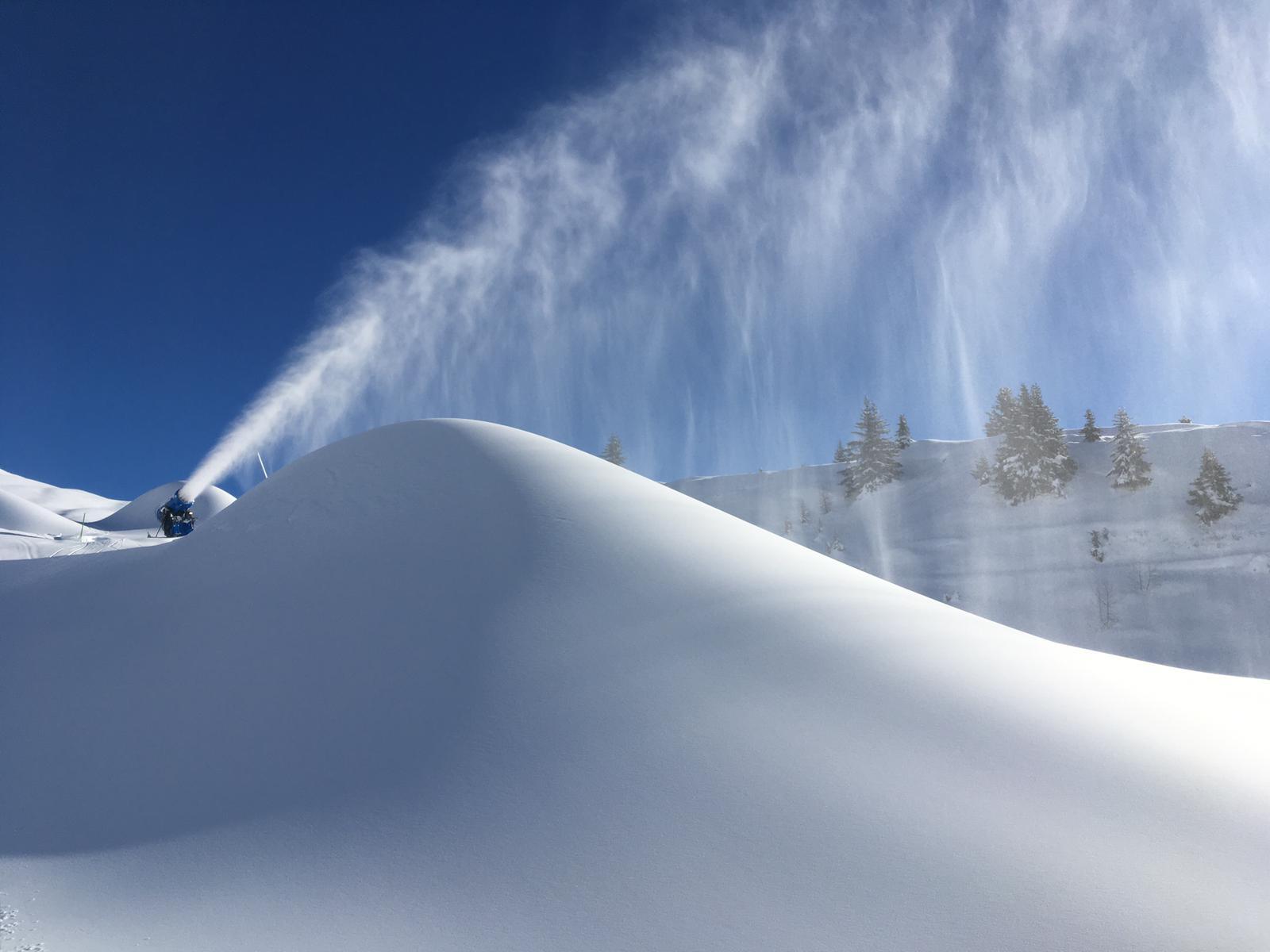進口造雪產品