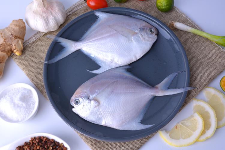4小銀鯧魚