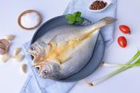 7開背黃花魚