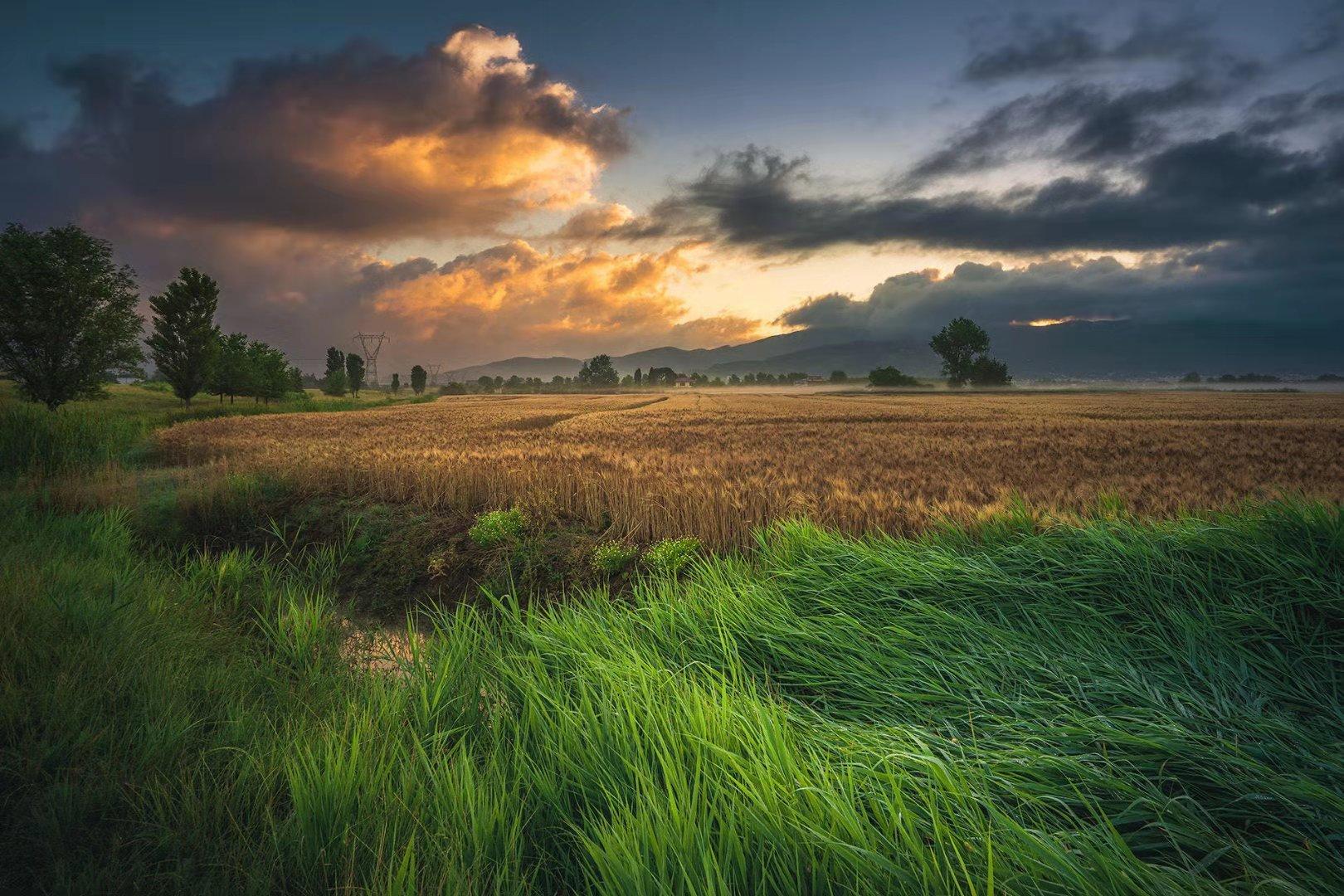 農業養殖污染-3
