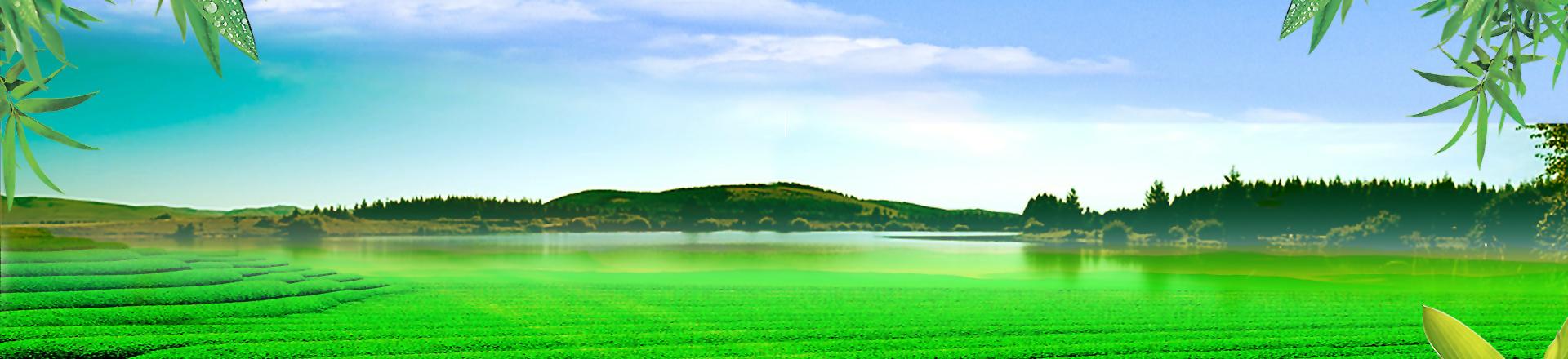 自然河道水庫水質凈化-2