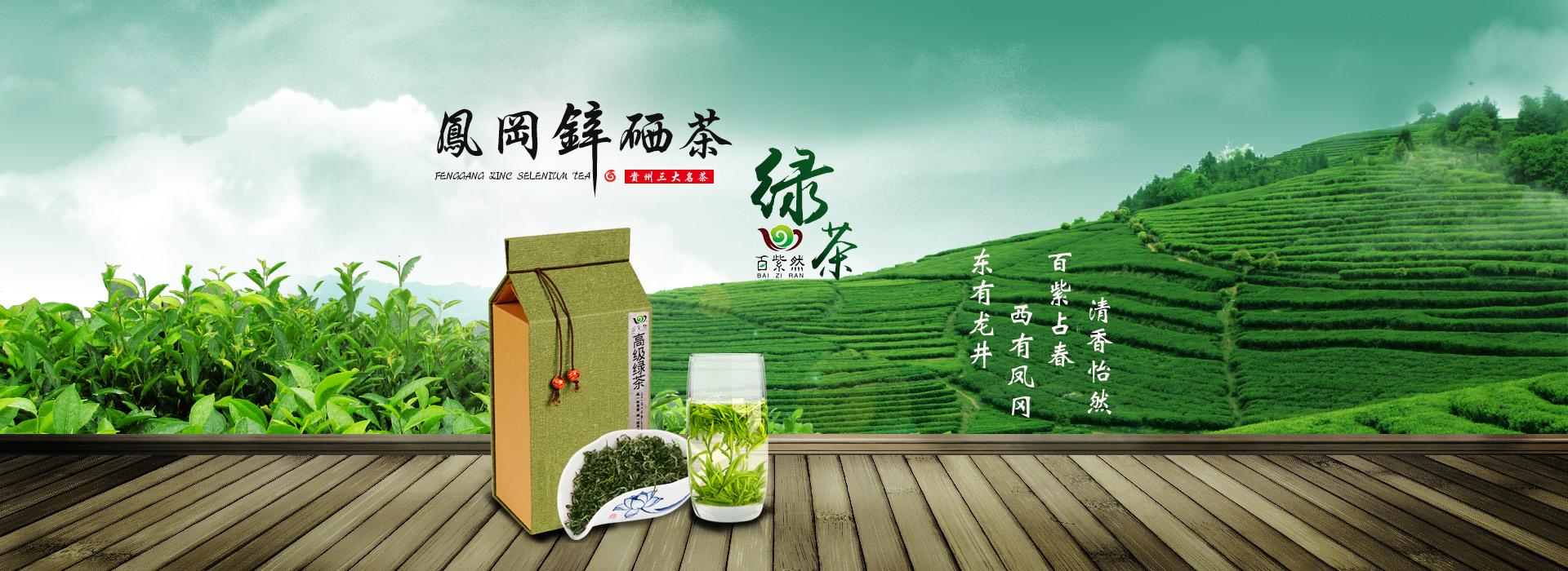 綠茶banner