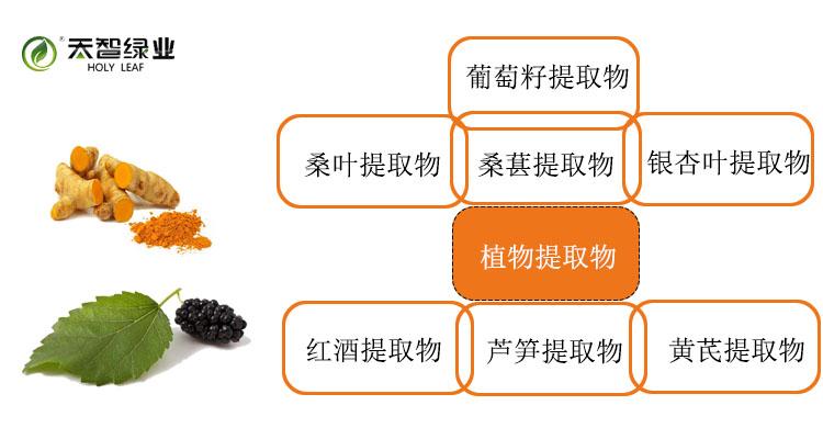产品分类植体