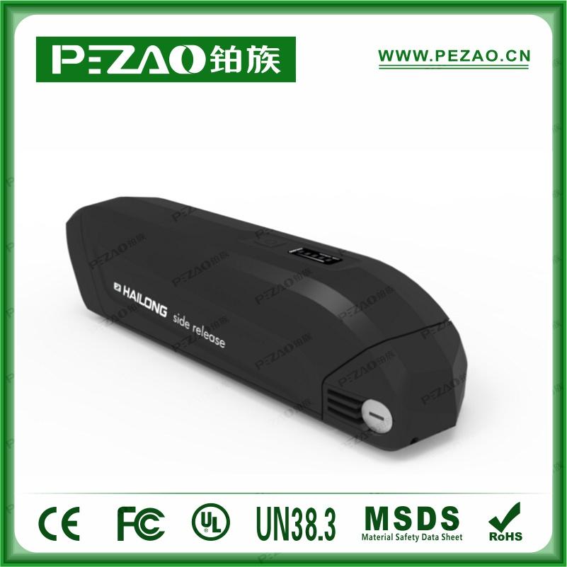 PZ-ZX081