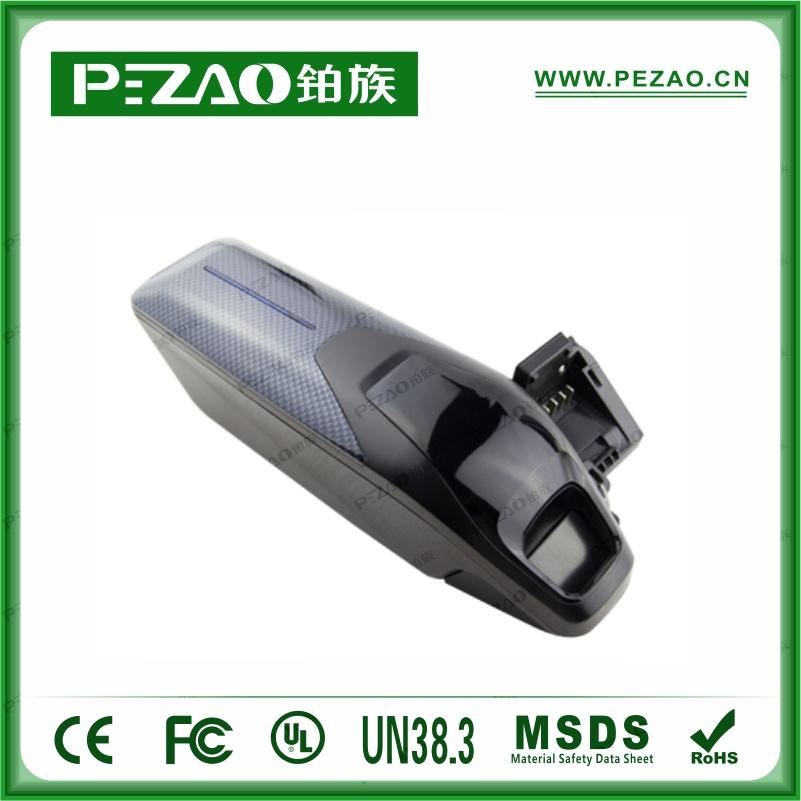 铂族电池PZ-ZX011