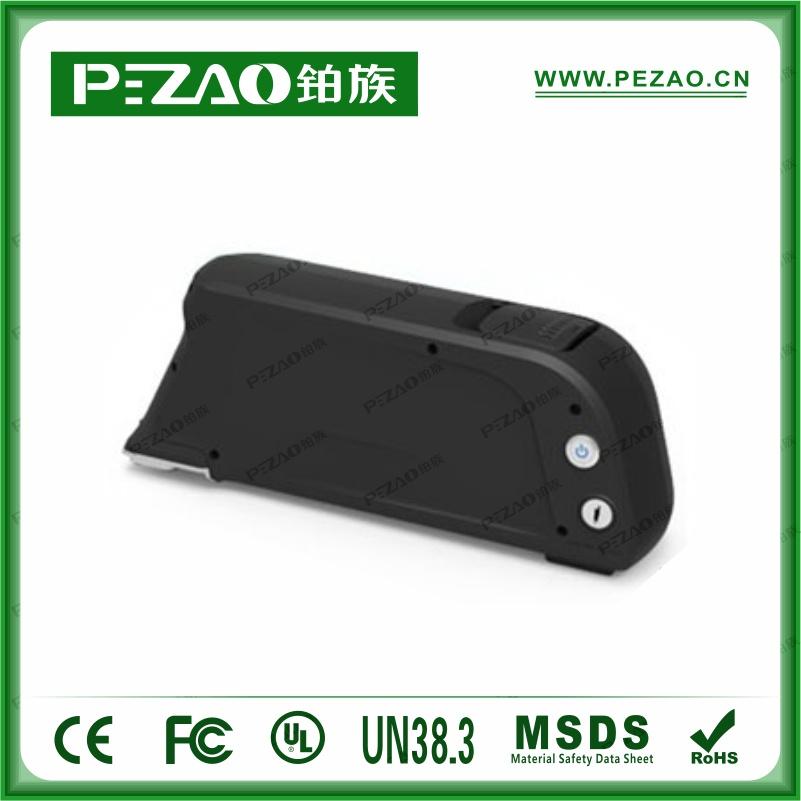 铂族电池PZ-ZX09