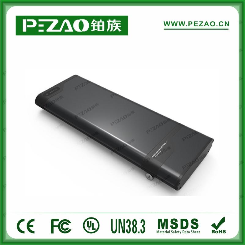 铂族电池PZ-ZX0282