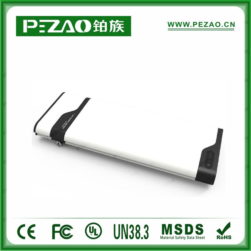铂族电池PZ-ZX0281