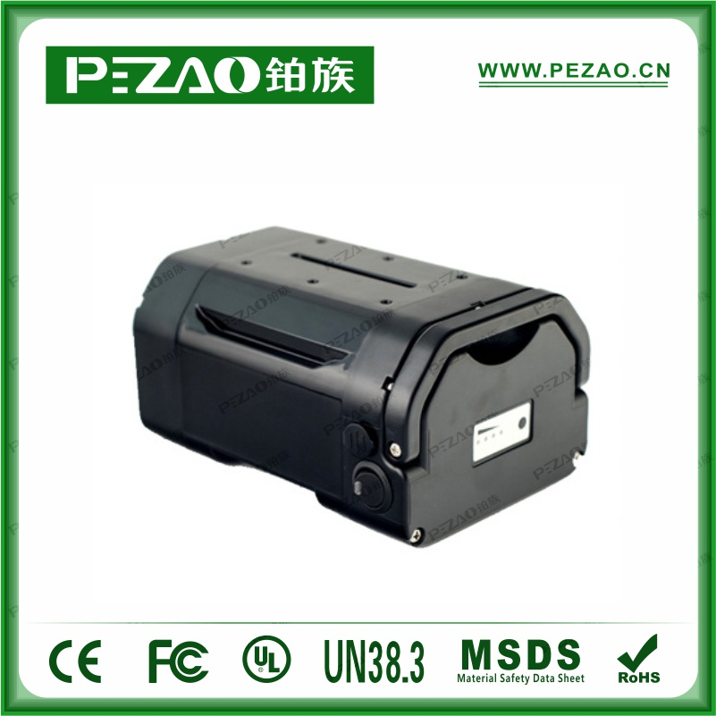 铂族电池PZ-ZX029