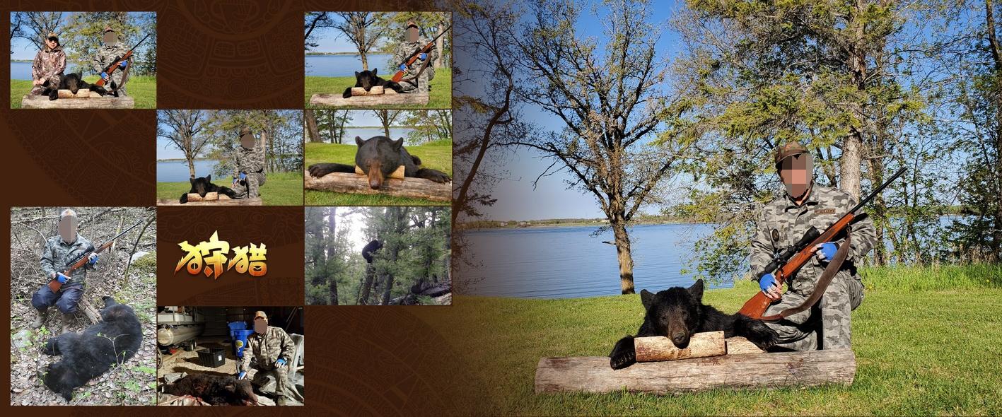 加拿大黑熊狩猎相册_页面_08_看图王