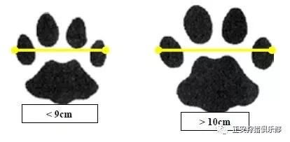 看图王批量图片转换结果-640-11