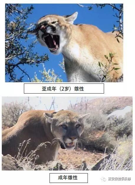 看图王批量图片转换结果-640-14