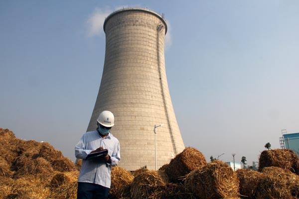 """生物热电重要性被低估""""煤改生""""助力清洁供暖"""