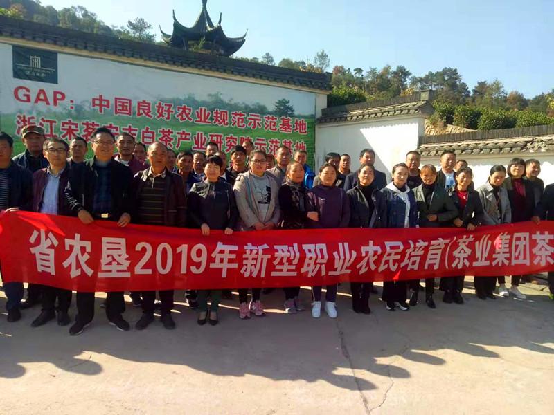 茶业集团组织职工外出学习拓展视野