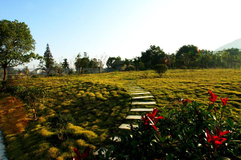 敬亭绿雪企业园林绿化5