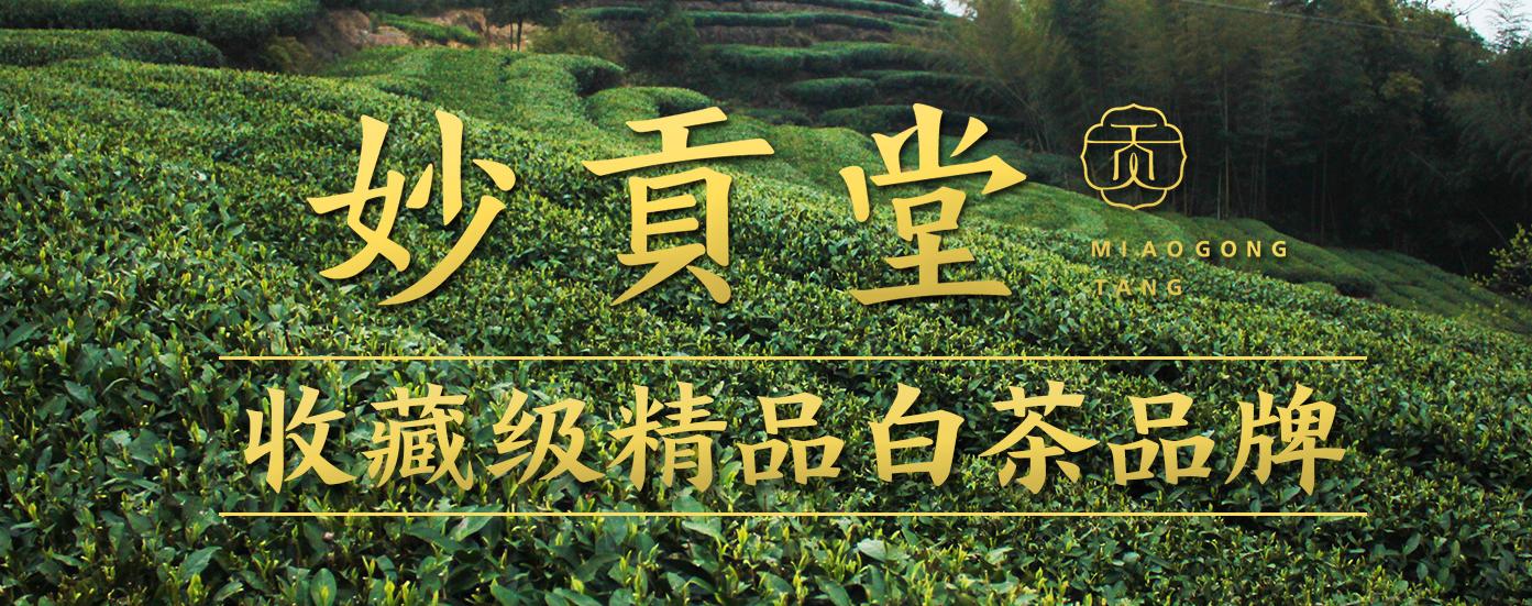 福鼎白茶加盟品牌-妙贡堂