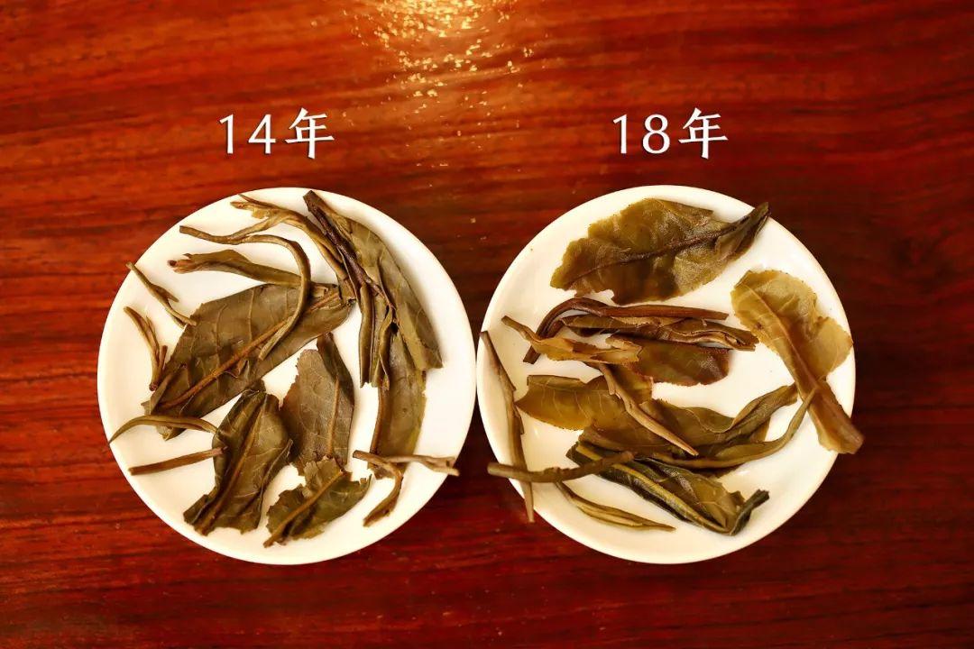 润元昌高山之上普洱茶-1