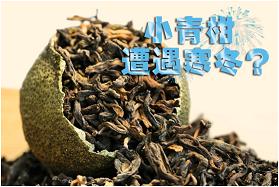 润元昌柑普茶-1