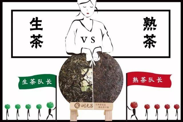 润元昌普洱茶-2