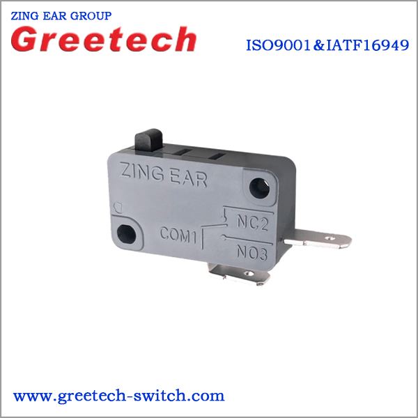 microswitchG5T16-G5T16-D2P200-623-3