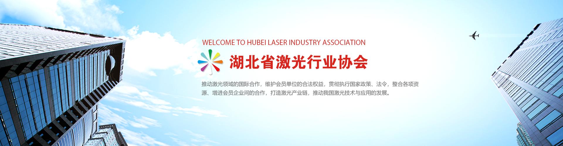 湖北省激光行业协会
