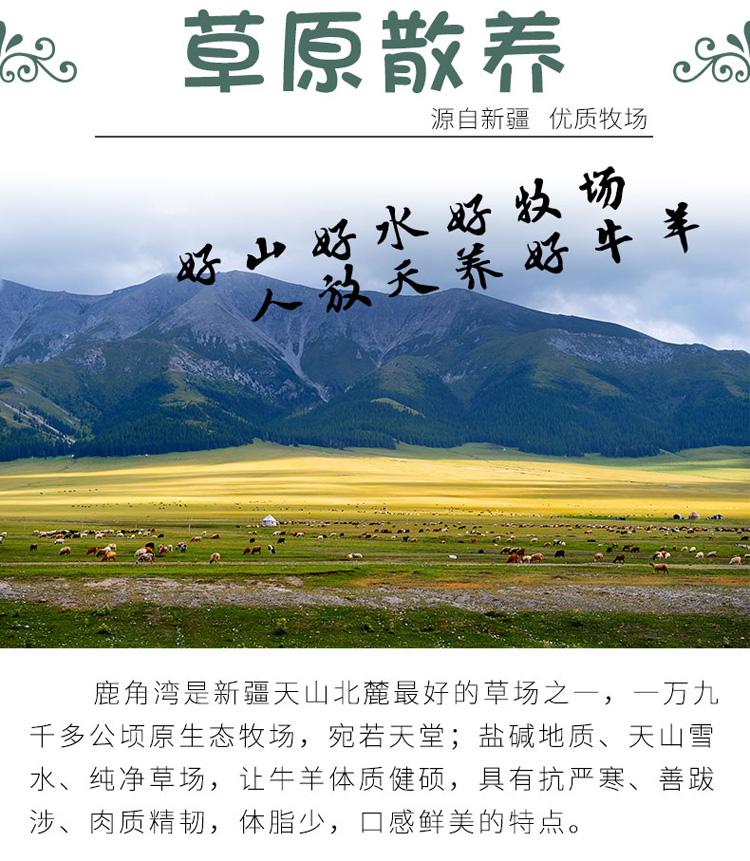 新疆西门塔尔牛牛腩块-新疆西门塔尔牛牛腩块_03