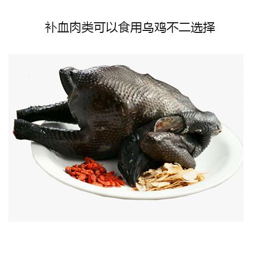 补血食物乌鸡