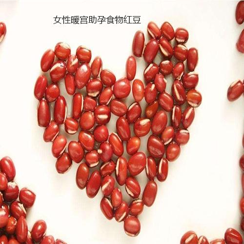 女性暖宫助孕食物红豆