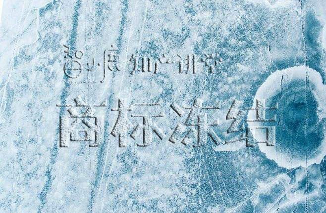 智小鹿知产讲堂:商标冻结有什么影响?该怎么办?