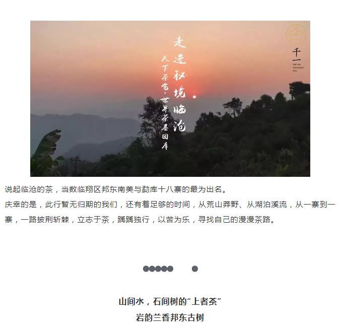 茶山行临沧-1