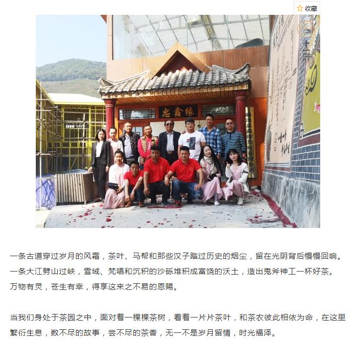 茶山行临沧-11
