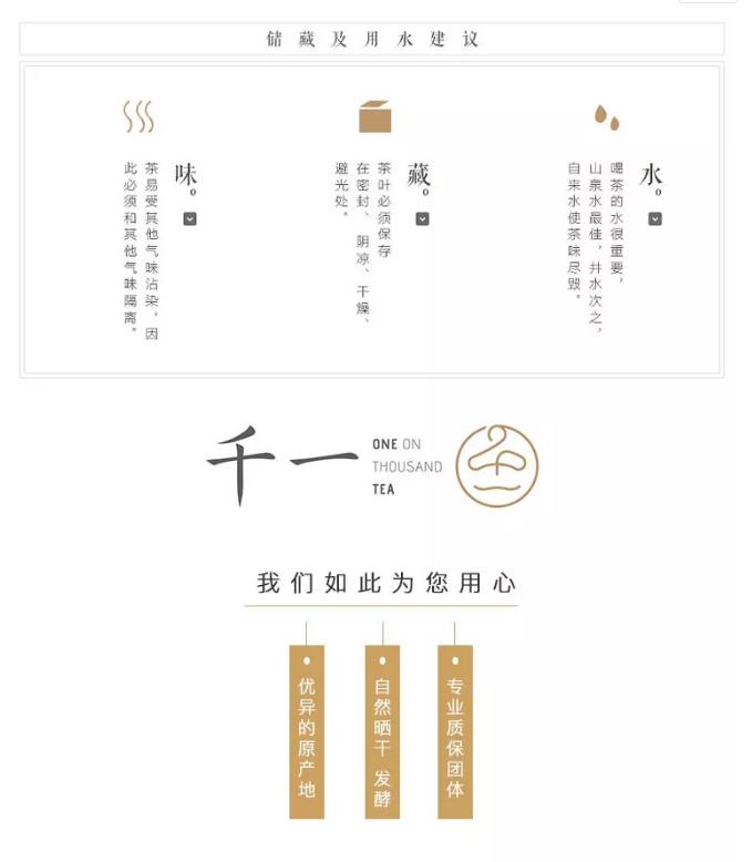 茶山行临沧-13