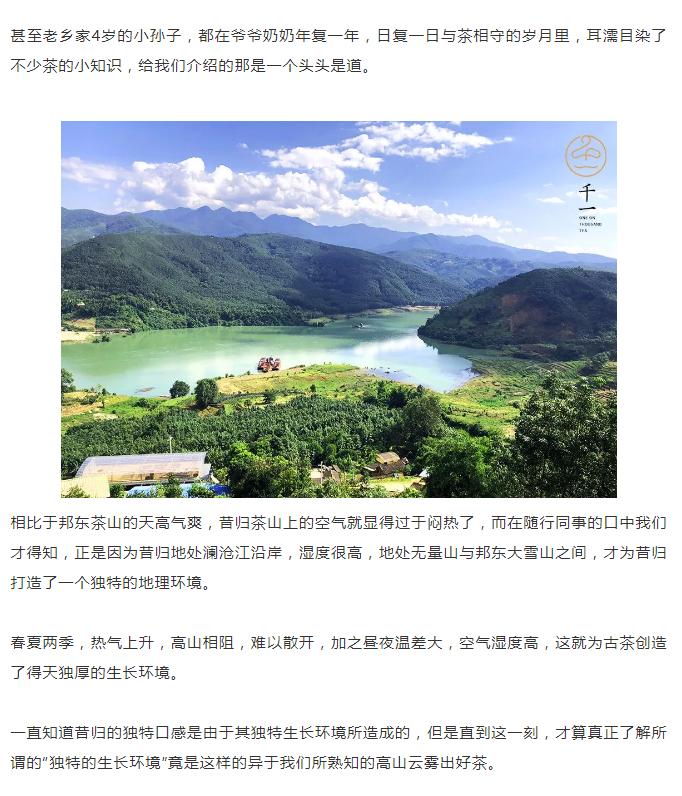 茶山行临沧-9