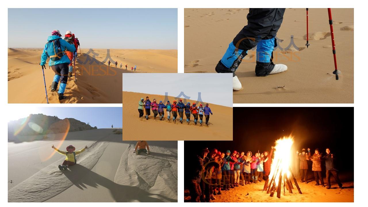 毅术沙漠3