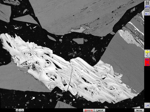 德国Fossil全自动煤岩分析系统