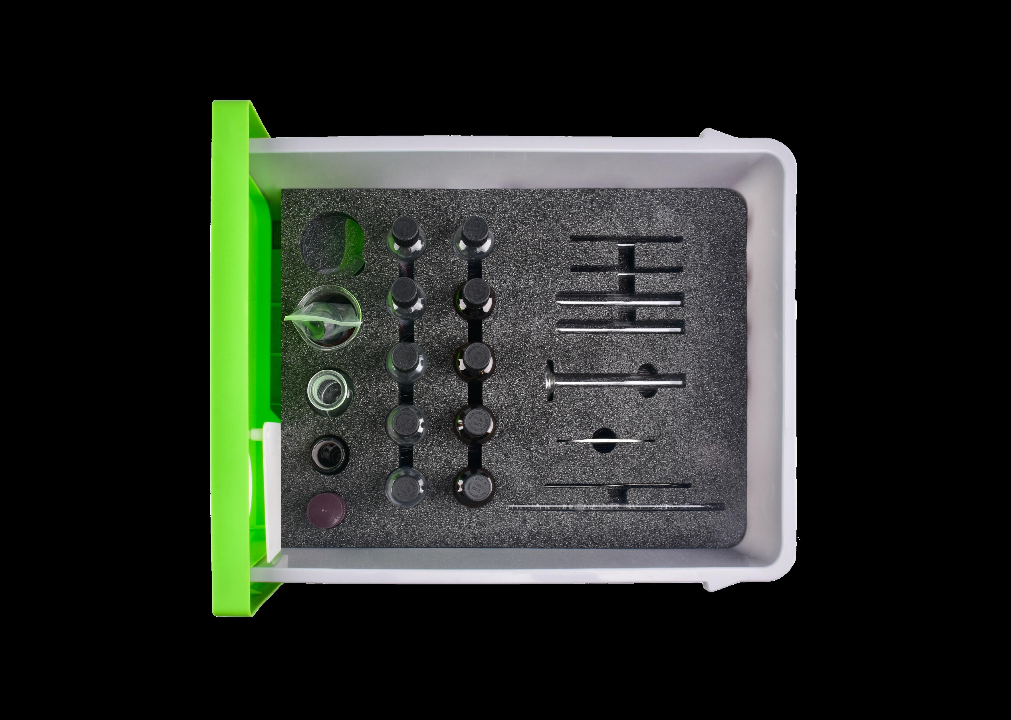高中化学实验箱-抽屉式新课标-芳香族