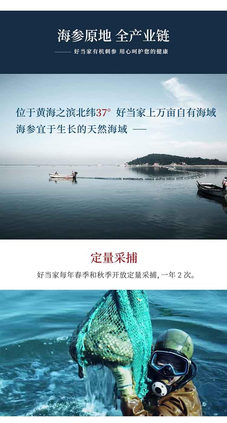 即食海参-详情页-7