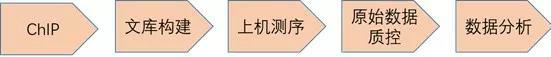 8167001_meitu_1
