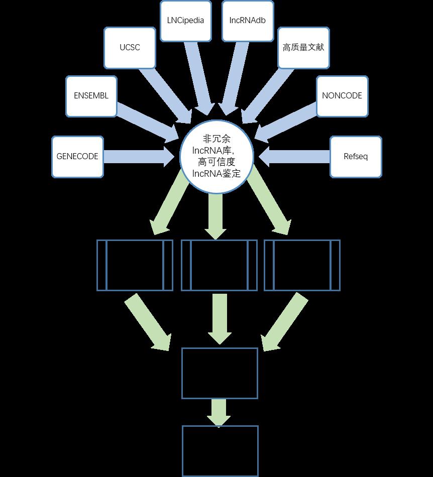 lncRNA芯片設計流程圖