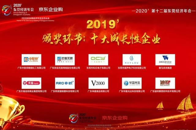 2019年度十大成长性企业颁奖