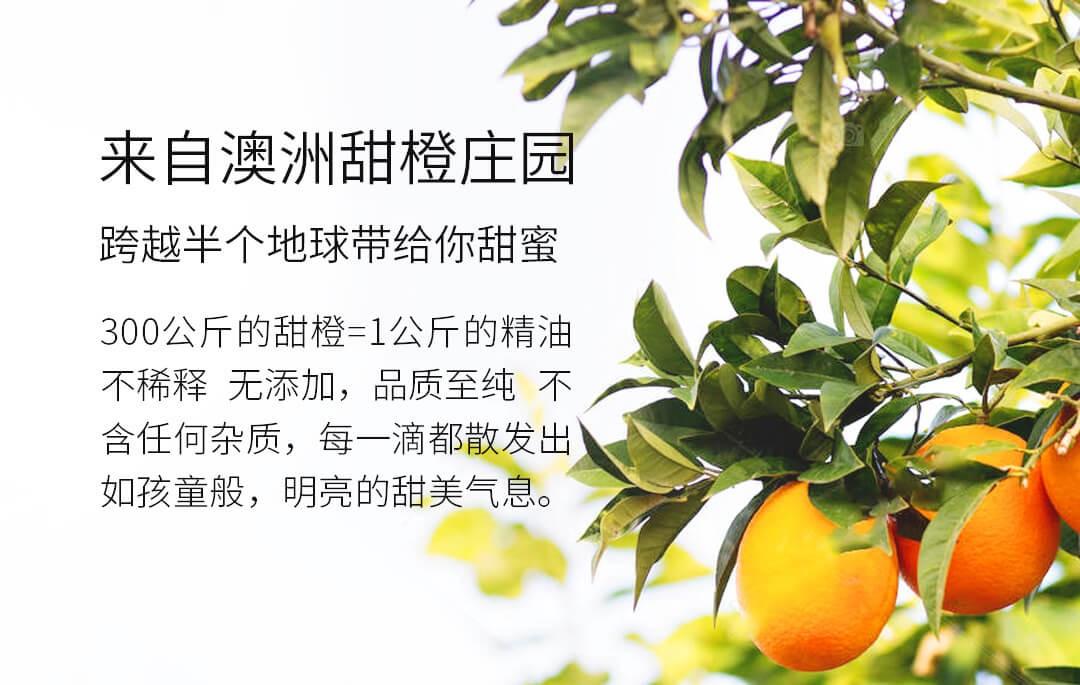 香薰甜橙-fda305ca8cae0c4f