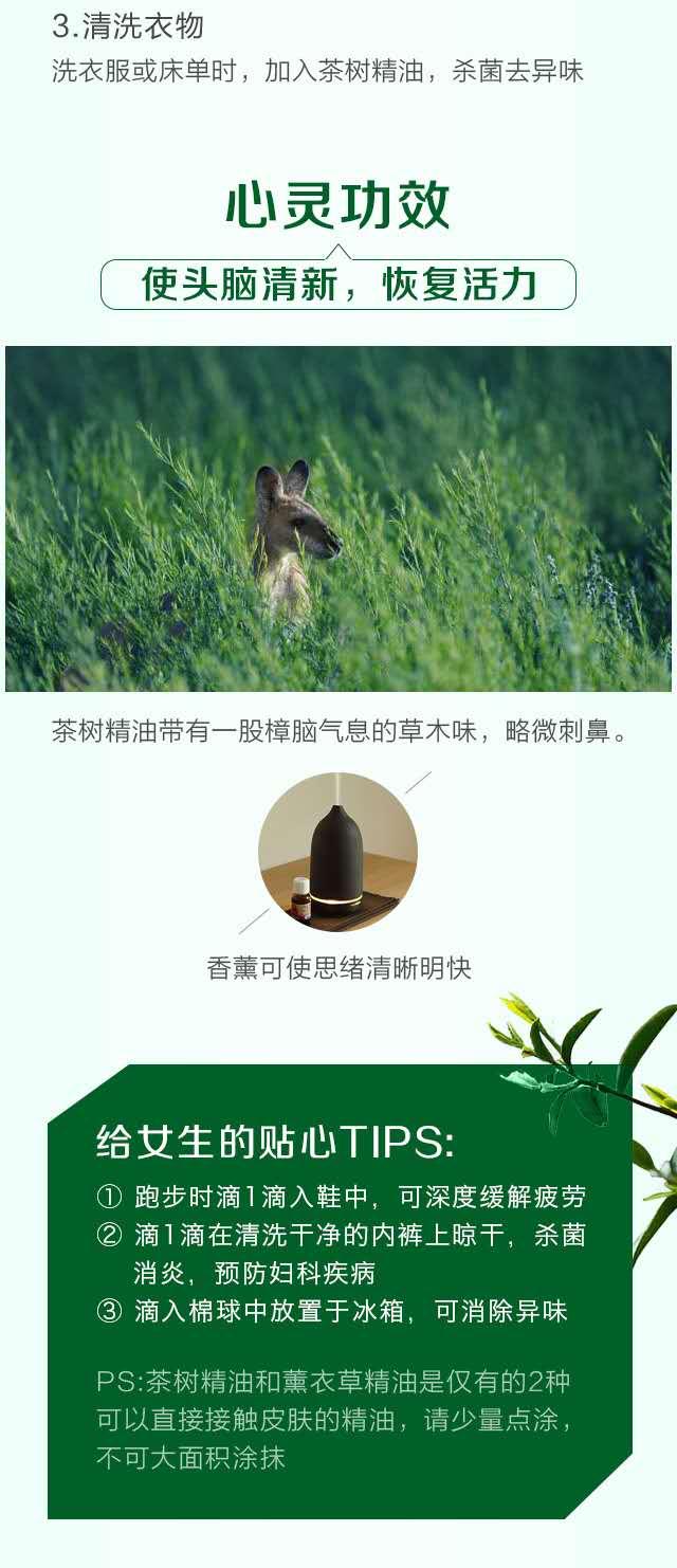 茶树精纯精油-微信图片_20190605151351